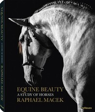 EQUINE BEAUTY: A STUDY OF HORSES